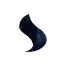Negro Azulado